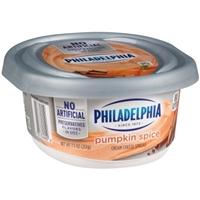 Philadelphia Cream Cheese Pumpkin & Cinnamon Food Product Image